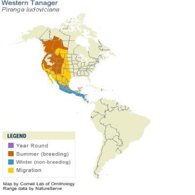 WestTan-range-map