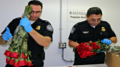 CBP agriculture specialists inspecting flowers
