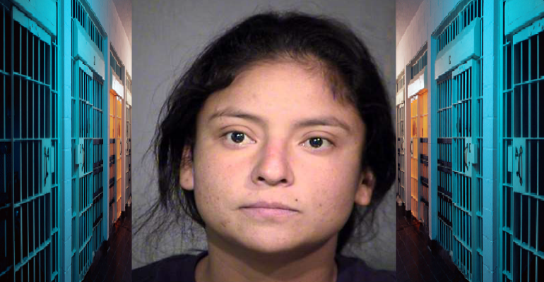 Naked Woman Who Stole Maricopa County Sheriff's Car Booked For