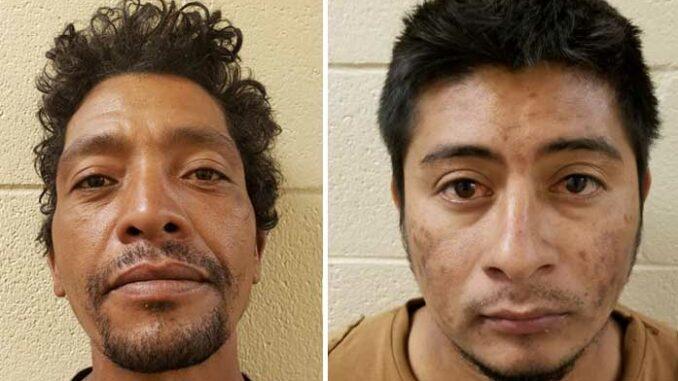 Two MS-13 Gang Members Apprehended By Border Patrol