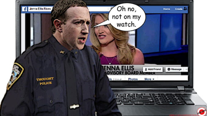 zuckerberg comic