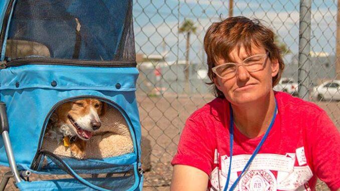 homeless pet owner