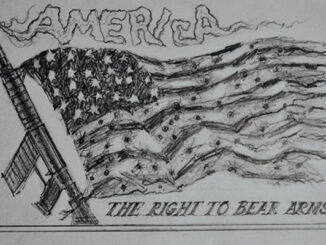 lasley right to bear arms comic
