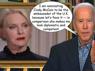 cindy mccain comic