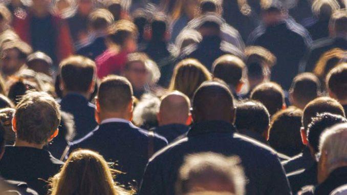 crowd herd