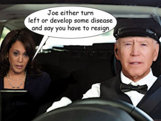 JOE BIDEN KAMALA HARRIS COMIC