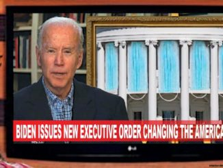 biden executive order comic